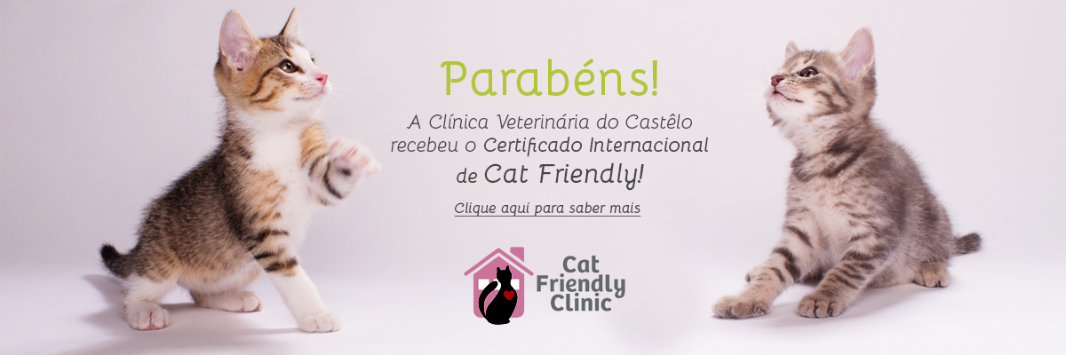 Certificado Cat Friendly Clinic